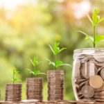Wachstum Kapital